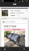 Screenshot of 虫判定器