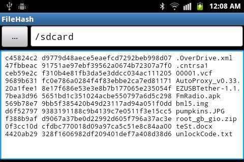 File Hash