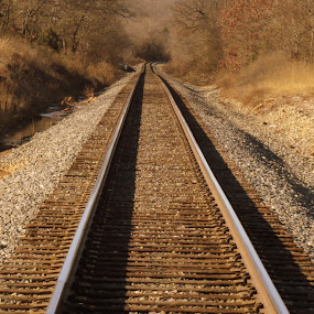 by Steve Tharp - Transportation Railway Tracks