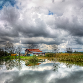 After flooding by Oliver Švob - Instagram & Mobile Android ( clouds, water, instagram, agriculture, croatia, reflections, farming, corn, farm, sony, sony xperia, sky, stab, mobile,  )