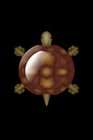 Screenshot of Turtle Compass