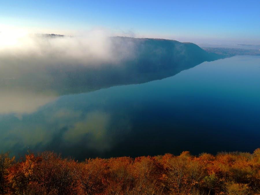 Golden matter by Bogdan Penkovsky - Landscapes Travel ( sky, simplicity, cold, nature, fog, autumn, brown, lake )