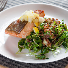 Seared Salmon with Preserved Lemon & Quinoa