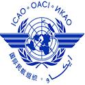IcaoCheck icon