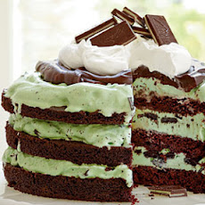 Mint Chocolate Chip Ice-Cream Cake