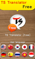 Screenshot of TS Translator