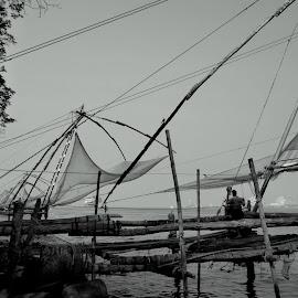 Fishy by Shaswata Bhowmick - Landscapes Beaches