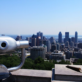 A View of Montreal by Jeff McVoy - City,  Street & Park  Skylines ( montreal, skyline, canada, view, downtown, city )