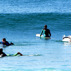 Preparing  by João Ascenso - Sports & Fitness Surfing