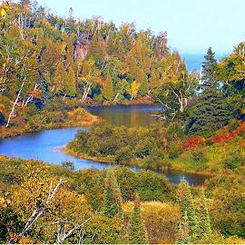 Autumn Bloom by Jennifer Schmidt - Landscapes Travel ( fall duluth, autumn duluth, gooseberry park, duluth overlook, duluth park,  )