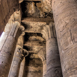 Ceiling by Vibeke Friis - Buildings & Architecture Public & Historical ( ancient, ceiling, temple of horus, pixoto, egypt, pillars, Architecture, Ceilings, Ceiling, Buildings, Building )