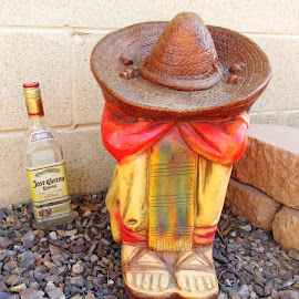 Tequila Tuesday by Joyce Thomas - Artistic Objects Other Objects ( tequila, tequila tuesday, yard ornament,  )