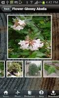 Screenshot of PlantFile Pro