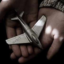 Memories Lost by Mikhail Berlin - Artistic Objects Toys ( air force, plane, toy, antique )