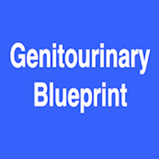 Genitourinary Blueprint PANCE