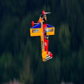Goin' ballistic by Bojan Porenta - Transportation Airplanes ( plane, airplane, giles, slovenia, g-202, bled, loop, transportation, aerobatic, air race,  )