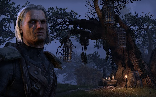 The Elder Scrolls Online to have separate servers for PC, PS4