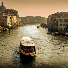 Vaporetto by Heather Allen - Transportation Boats ( dawn, grand canal, venice, vaporetto, canal, italy,  )