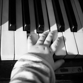 Young talent by Denny Gruner - Artistic Objects Musical Instruments ( concert, concept, retro, equipment, chord, child, hand, playing, seamless, macro, style, performance, melody, harmony, baby, key, black, classic, sheet, fingerboard, shiny, music, keyboard, piano, musical, vintage, jazz, white, play, piano keys, image, traditional, finger, instrument, entertainment, octave, sweet, classical, horizontal, sound, popular, melodic, artistic, design )