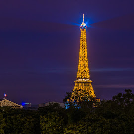 Paris Night by Sean Heatley - Buildings & Architecture Statues & Monuments ( homeh, paris, spirit, france, historical, travel, night-time, public, heritage, city )