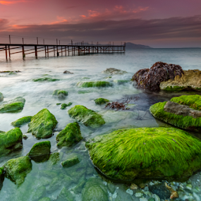 The green rocks by George Papapostolou - Landscapes Waterscapes ( george papapostolou, sunset, greece, kos island, seascape, nikon, landscape )