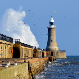 north pier by Paul Pirie - Landscapes Weather ( water, breach, waves, lighthouse, sea, stone, pier, wall, coast )