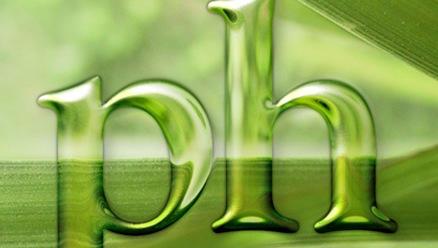 plantas text
