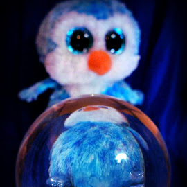 Happy Feet by Cecilia Sterling - Artistic Objects Toys ( ball, blue, feet, penguin, meditation )