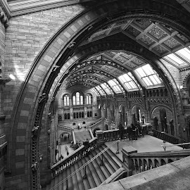 gothic in London by Almas Bavcic - Buildings & Architecture Other Interior