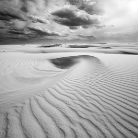 Desert Sea Shell by Michael Keel - Landscapes Deserts ( white sands missile range, sea shell, desert, white sand, new mexico )