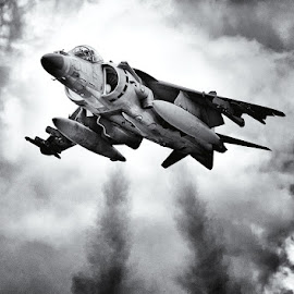 Harrier Jump Jet by Huet Bartels - Transportation Airplanes ( black and white., jump jet, raf, harrier )