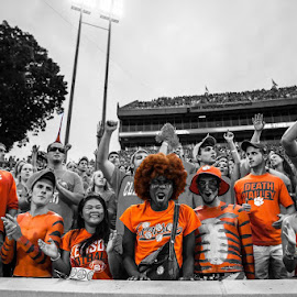 Get lost in the Orange Empire by Forrest Crocker - Sports & Fitness American and Canadian football