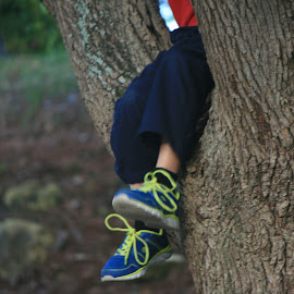 Sunset tree climb by Eric Rainbeau - Babies & Children Hands & Feet ( child, tree, sunset, sneakers, evening )