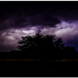 Thunder in the night by Wessel Badenhorst - Landscapes Weather (  )