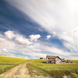 The Abandoned House by Ankit Saxena - Landscapes Prairies, Meadows & Fields ( sky, blue, green, house, palaouse, abandoned )