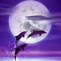 Dolphin -Amethyst- icon