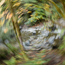 Worm hole by Elmo Ensio - Abstract Patterns ( abstract, twister, tree, green, creek, long exposure, yellow )
