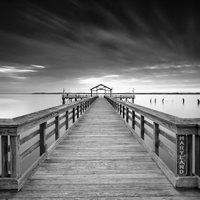 the line by Edward Kreis - Black & White Landscapes ( lee big stopper, water, neutral desity, black and white, waterscape, rivers and streams, lee 0.9 gnd, very long exposure, dawn, maryland, virginia, long exposure, sunrise, potomac river, leesylvania state park, filters, lee foundation )