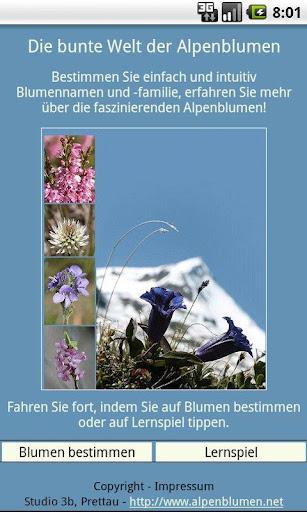 Die bunte Welt der Alpenblumen