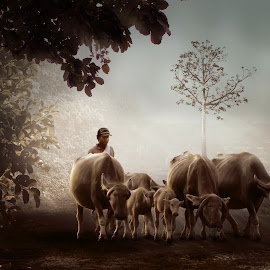 pulang ke kandang by Herry West - Digital Art People ( buffalo, shepherd, village, nature, man )