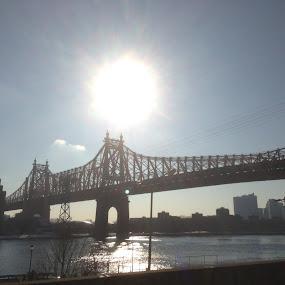 New York Sunrise by Linda Hogue - City,  Street & Park  Skylines (  )