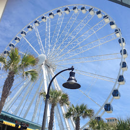 Sky Wheel by Devin Riley - Travel Locations Landmarks ( mrytle beach )