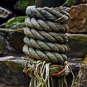 rope around a wooden pole by Magdalena Wysoczanska - Artistic Objects Other Objects (  )