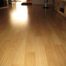 Laminate Floor Cleaner