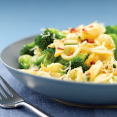 Spicy Orecchiette with Broccoli