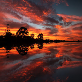 Reflected Glory by Julia Harwood - Landscapes Sunsets & Sunrises ( reflection, sky, red, sunset, sea, cloud, ocean, beach,  )