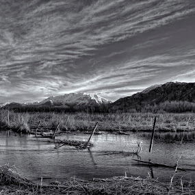 Utah Wet land  by Cody Hoagland - Black & White Landscapes ( water, wetlands, ytah )