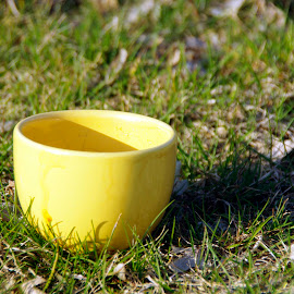 coffe cup & grass by Bud Gheorghe - Novices Only Objects & Still Life