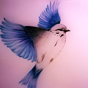 Fly away by Viktória Nagy - Drawing All Drawing