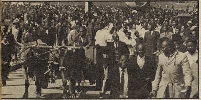 The Oxcart in Which Steve Biko was Taken to His Final Resting Place
